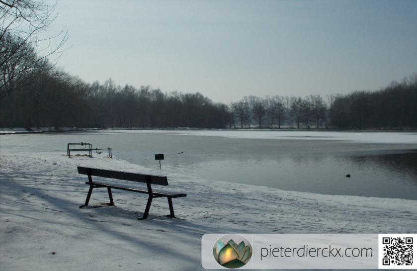 winter hiver natuur nature park parc ice snow neige