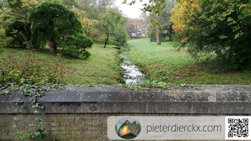 natuur nature park parc water eau