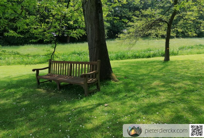bench banc bank nature natuur park parc
